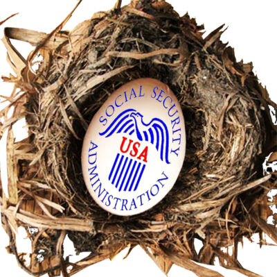 Social Security Admin egg in a nest